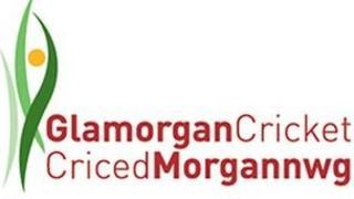 Clwb Criced Morgannwg