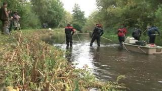 Fish being checked on the River Kennet