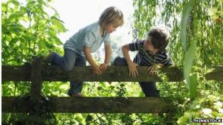 Children climbing gate