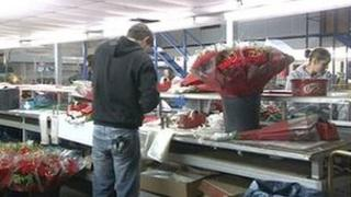 Flowers being packaged to be delivered