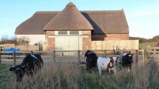 The new visitor centre at Hengistbury Head