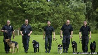West Midlands Police dogs