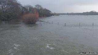 Flooding at Lower Bockhampton