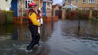 A rescue team member from Specialist Group International carries a dog through flood water