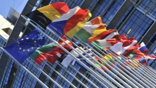 Flags outside European Parliament, Strasbourg - file pic