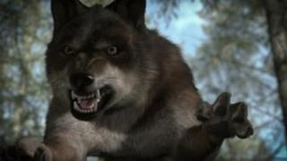Wolf from Wolfblood programme