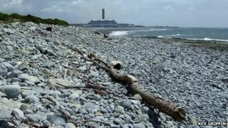 Summerhouse Point beach