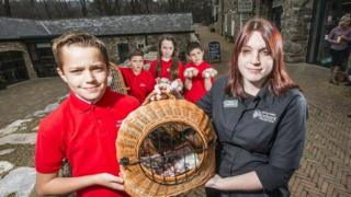 Pupils from Ysgol San Sior with their hens and eggs at Bodnant Welsh Foods near Conwy
