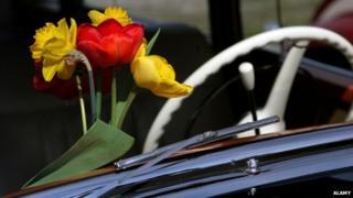 Flowers in car