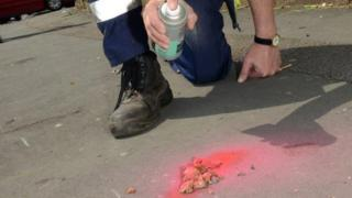 A council official sprays dog mess