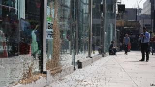 People stopped to take pictures of the swarm in Victoria Street