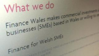 Screen grab of Finance Wales page