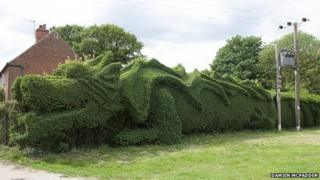 The dragon-style topiary
