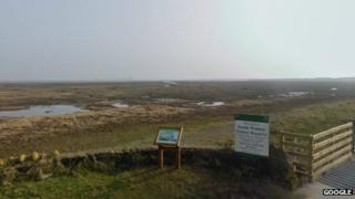 South Walney nature reserve