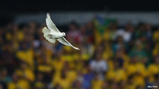 Dove released at the World Cup opening ceremony