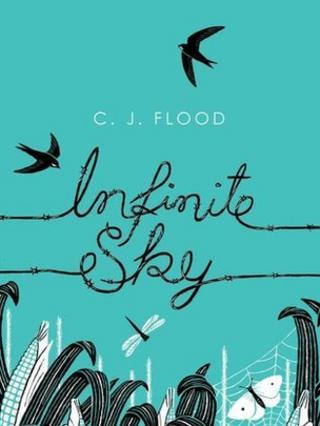 Cover of Infinite Sky