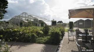 Wisley cafe, photo courtesy of RHS Images