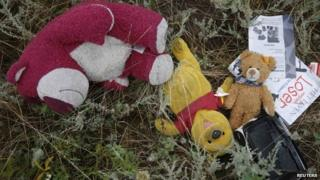 Crash refuse from the MH17 jet disaster
