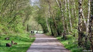 Clayton Vale nature reserve