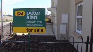 Peter Alan sign
