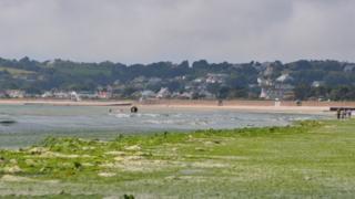 St Aubin's bay covered in Sea Lettuce