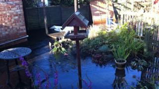 Sludge in a garden in Gold Road, March