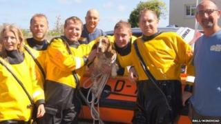 Rescuers and Sprig