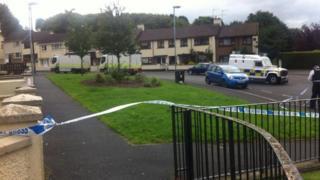 Scene of alert in Innisfree Gardens in Strabane