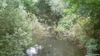 View from the Green Lane bridge looking towards Stafferton Way