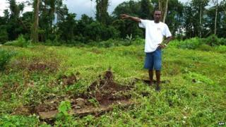 Man stands by deforested area