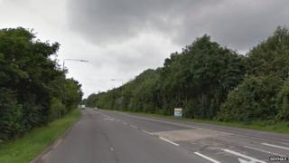 Colwick Loop Road has thousands of trees