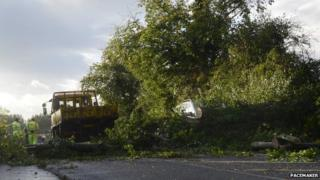 Fallen tree blocks road