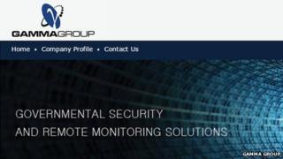 Gamma Group webpage