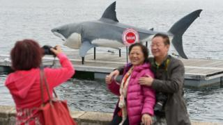 Chinese tourists pose for a photo at Sydney harbour
