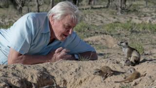 David Attenborough with some furry friends