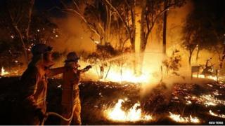 Firefighters attempt to extinguish a bushfire at the Windsor Downs Nature Reserve, near Sydney on 10 September, 2013