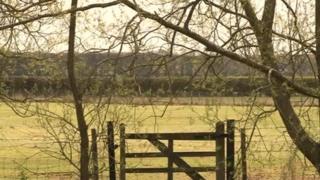 Chilmington farmland