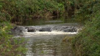 River Enler