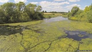 'Algal buster' at Wilton Water, near Marlborough