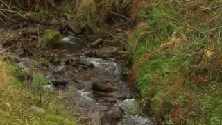 Stream near Llangynidr