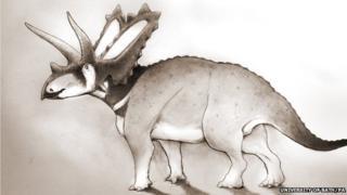 Horned dinosaur - Pentaceratops