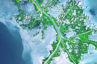 Satellite image of Mississippi River delta (c) NASA