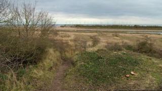 Seacroft Marsh