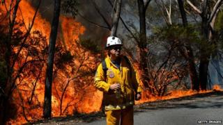 Fire fighter monitors a back-burn near Mount Victoria in the Blue Mountains on 21 October 2013