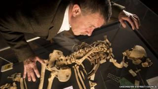 Man studying Racton Man skeleton