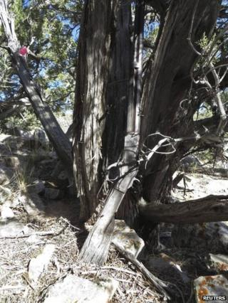 The rifle as it was found in the Great Basin National Park