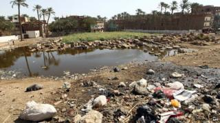 Polluted water at an archaeological site in Egypt