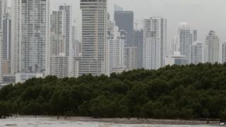 A mangrove forest hugs the coastline of Panama City in this file photo from 18 October 2012