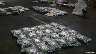 Cannabis seized in North Shields