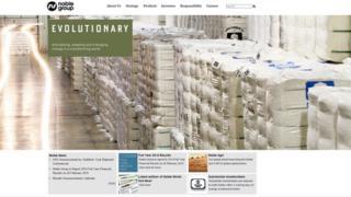 Screen grab of Noble Group website